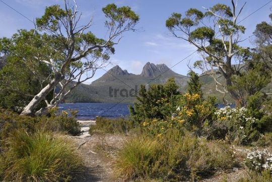 Cradle Mountain by Dove Lake, Cradle Mountain Lake St. Clair National Park, Tasmania, Australia