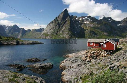 Wooden house, Hamnoy, Lofoten, Norway, Scandinavia, Europe