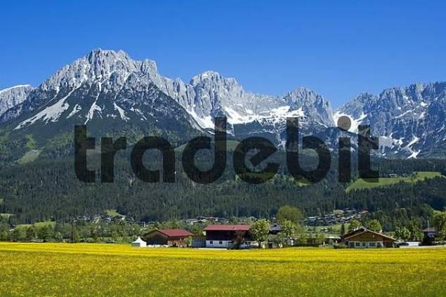 Ellmau at the Wilden Kaiser near Scheffau Tyrol Austria