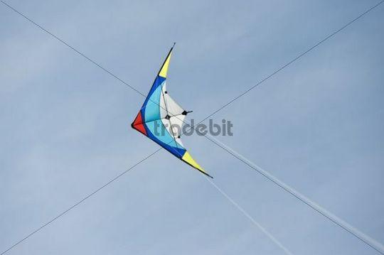 Steering kite