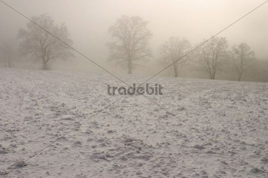 Winter landscape on Lesna, White Carpathian Mountains, protected landscape area, Bile Karpaty, Czech Republic, Europe