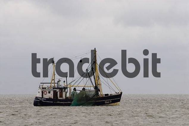 Fishing boat on the North Sea at Sylt, Schleswig Holstein, Germany