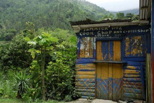 kleine h tte im urwald rio ochos jamaika karibik mittelame. Black Bedroom Furniture Sets. Home Design Ideas