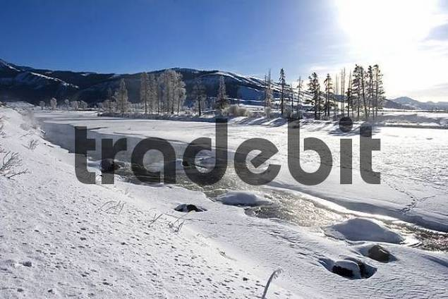 Lamar River in Winter in Yellowstone National Park