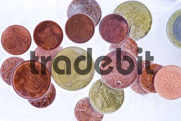 coins in ice