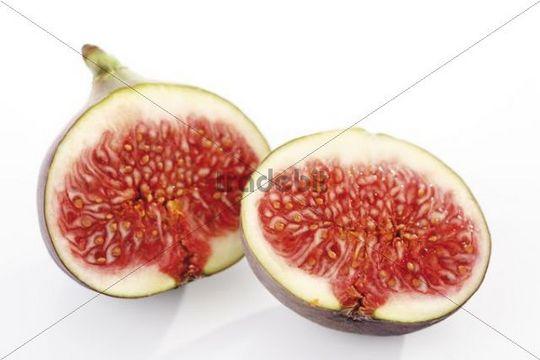 Common Fig Ficus carica, halved