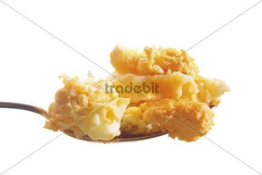 Scrambled egg on a spoon