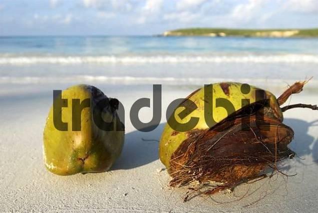 Red Beach, Vieques island, Puerto Rico