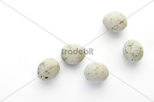 Marzipan eggs