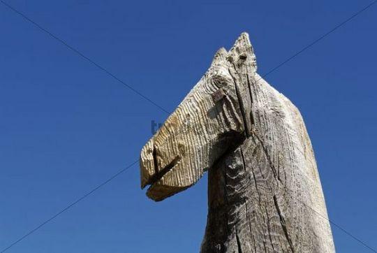 Horse head, horse totem, fetish, Saljugem, Sailughem, Saylyugem mountains, Altai Republic, Siberia, Russia, Asia