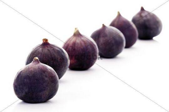Row of fresh Figs Ficus carica