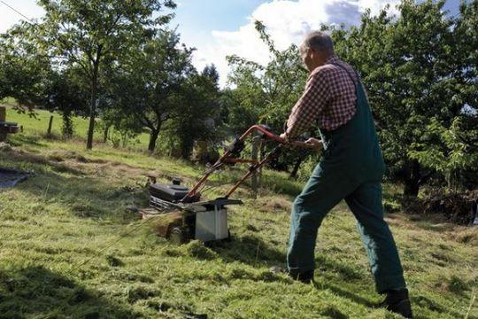 Gardener with lawnmower