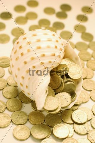 Seashell overflowing with coins