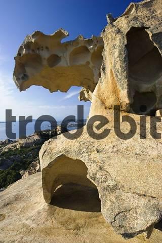 bearrock, Capo d Orso, Sardinia, Italy