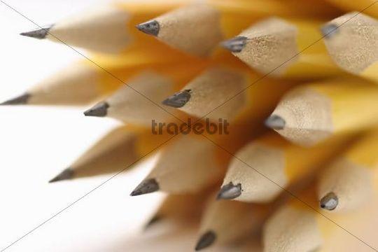 Bundle of sharpened yellow pencils