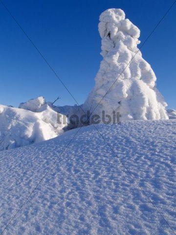 Winter on Radhost peak, abundance of new snow, Beskids protected landscape area, Northern Moravia, Czech Republic, Central Europe