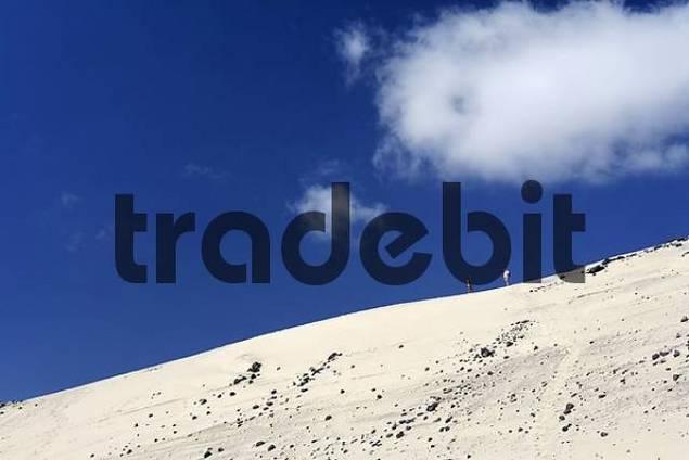 couple on sand dune , Playa de Sotavento , Jandia , Fuerteventura , Canary Islands