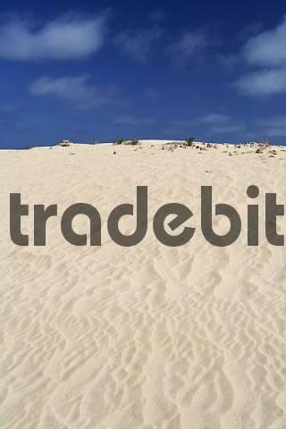 El Jable , Jandia , Fuerteventura , Canary Islands