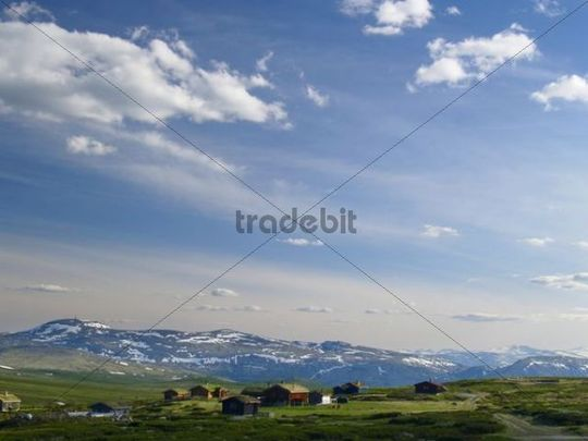 Grimsdalen Valley, Dovre National Park, Norway, Scandinavia, Northern Europe