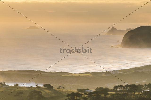 View of Dunedin Beach at sunset, Dunedin, Otago Peninsula, South Island, New Zealand, Oceania
