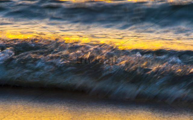 Wave, surf, at sunset / Weststrand, Halbinsel Fischland-Darß-Zingst, Mecklenburg-Western Pomerania, Germany, Europe