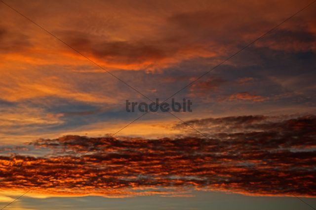 Evening sky /