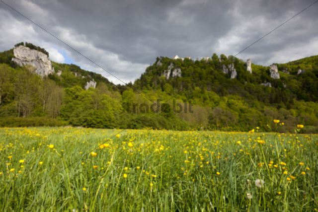View from the Danube Valley towards Burg Wildenstein Castle with rocks, Leibertingen, Baden-Wuerttemberg, Germany, Europe