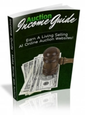 Pay for Auction Income Guide