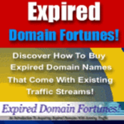 Pay for Expired Domains Fortunes - Make money from expired domains