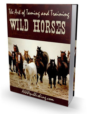 Pay for The Art of Taming and Training Wild Horses (PLR)