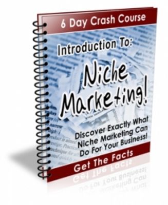 Pay for Introduction To Niche Marketing 6 Day Crash Course