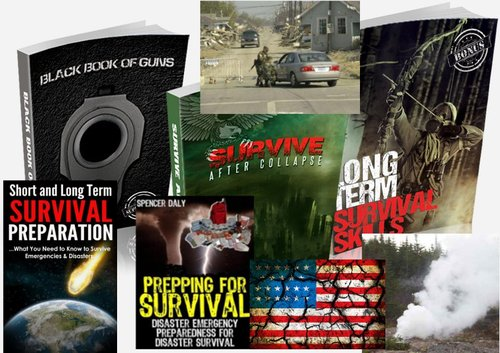 Pay for Survive The Collapse Books (+ 300 more Books)