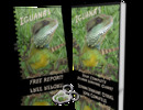 Thumbnail Your Complete Iguana Survival Guide