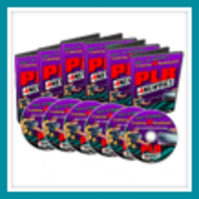 Pay for PLR for newbies/big profits on internet marketing