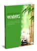 Thumbnail Aromatherapy Wonders