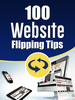 Thumbnail 100 Website Flipping Tips