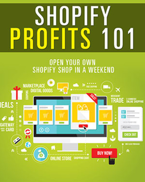 Pay for Shopify Profits 101