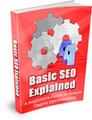 Thumbnail Basic Search Engine Optimization (SEO) Explained (MRR)