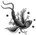 Thumbnail Tattoo flash - Bird-Gecko with stars