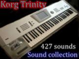 Thumbnail Korg Trinity  427 waves