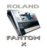Thumbnail Roland Fantom X / format Wav 8.GB