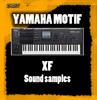 Thumbnail YAMAHA MOTIF XF PADS
