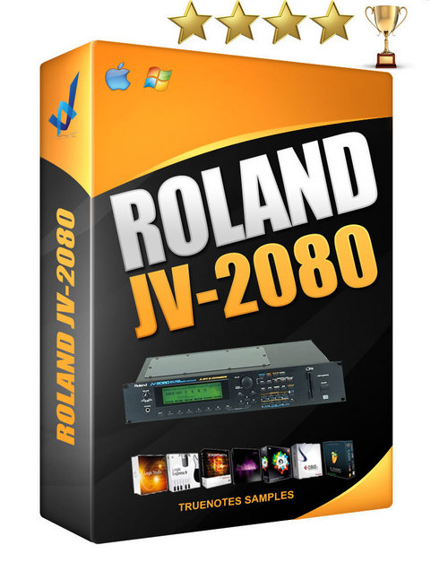 Pay for Roland JV 2080 sound library768 sounds .wav