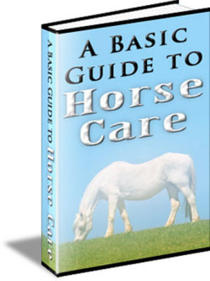 Pay for A Basic Guide to Horse Care