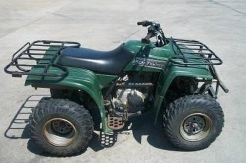 2000 Yamaha Bear Tracker 250