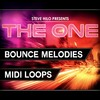 Thumbnail THE ONE: Bounce Melodies