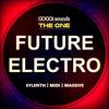 Thumbnail Future Electro