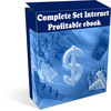 Thumbnail Complete Set Internet Marketing Guide & Strategy ebook PLR