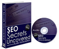 Thumbnail Search Engine Optimizer SEO Secrets Uncovered PLR