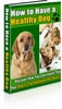 Thumbnail How To Have A Healthy Dog MMR